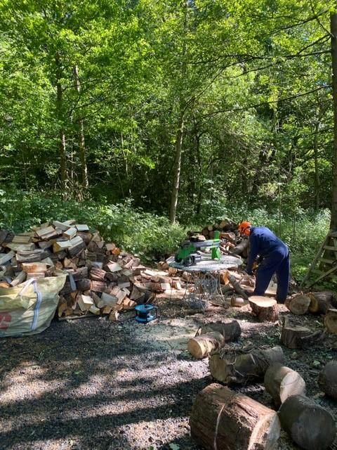 Seasoned split logs in m³ bags